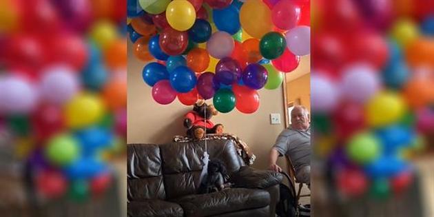 ¡Un perro volador!