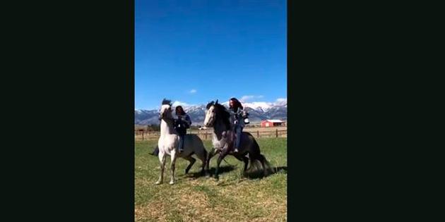 ¡Menudo susto a caballo!