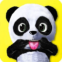Daily Panda: Animal virtual